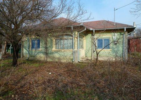 BONUS ! Vand casa caramida cu teren intravilan 4570 mp (1000 mp vie) in Draganesti de Vede-Teleorman, ideal pentru apicultori, la 300 m de padure de tei, BONUS 5.000 mp teren arabil extravilan