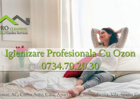 Igienizare/Dezinfectare Cu Ozon Aer Conditionat/Clima Auto/Locuinta