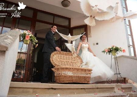 Porumbei albi pentru nunta