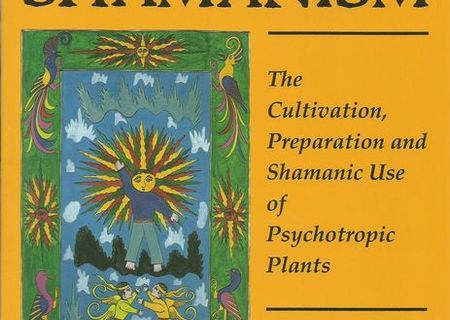 Psyhedelic Shamanism de Jim DeKorne
