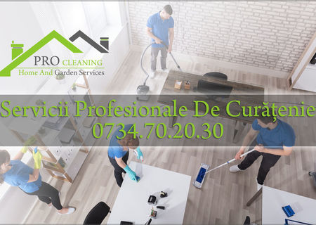 Servicii Curatenie Timisoara / Firma De Curatenie / Pro Cleaning