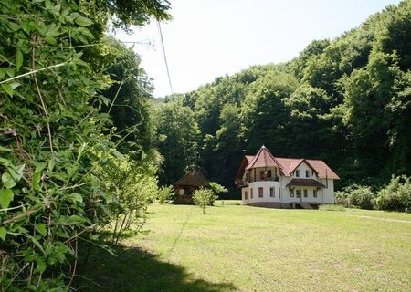 Vand casa vila in Sighisoara