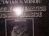 Bazele matematicii signadforasice, Voinoiu , 1996