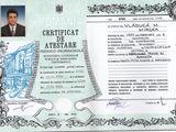 ing. constructor - RTE si Diriginte de santier