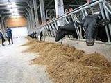joburi noi - fermieri Germania