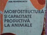 Morfostructura si capacitate productiva la animale ,1978