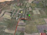 teren de vanzare la 7 km de Timisoara,Covaci