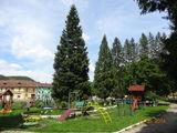 Vând apartament 2 camere în centrul localității Nădrag