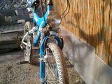 Vand bicicleta rich.